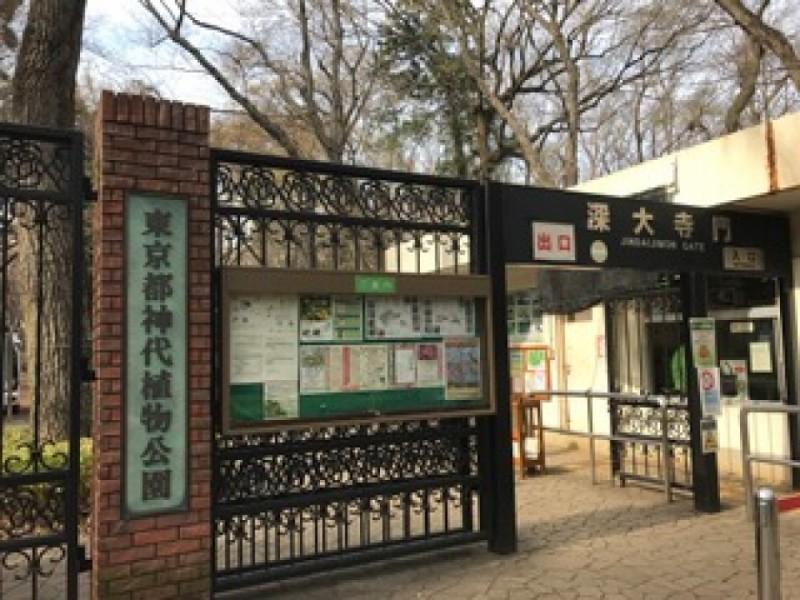 【13:00】季節の植物を楽しめる「神代植物公園」を散策