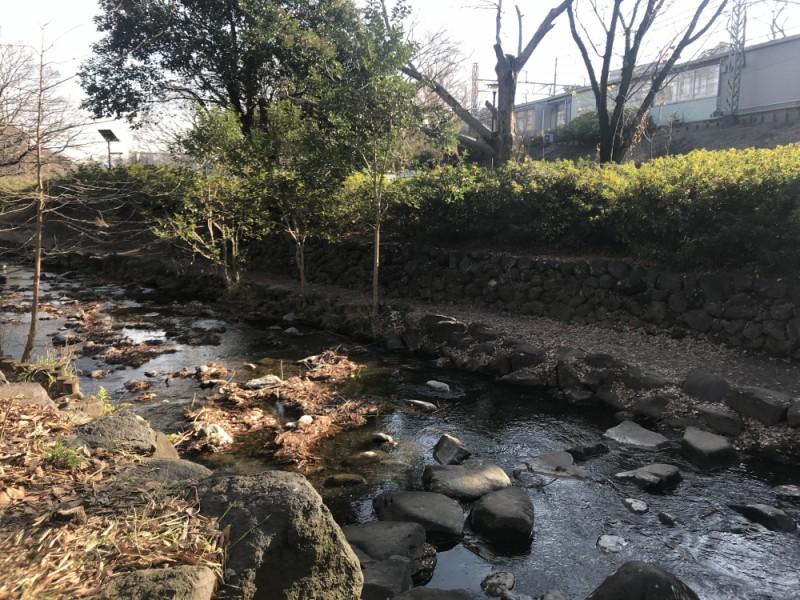 【13:20】スイーツを食べ歩きしながら神田川沿いの緑道を散歩