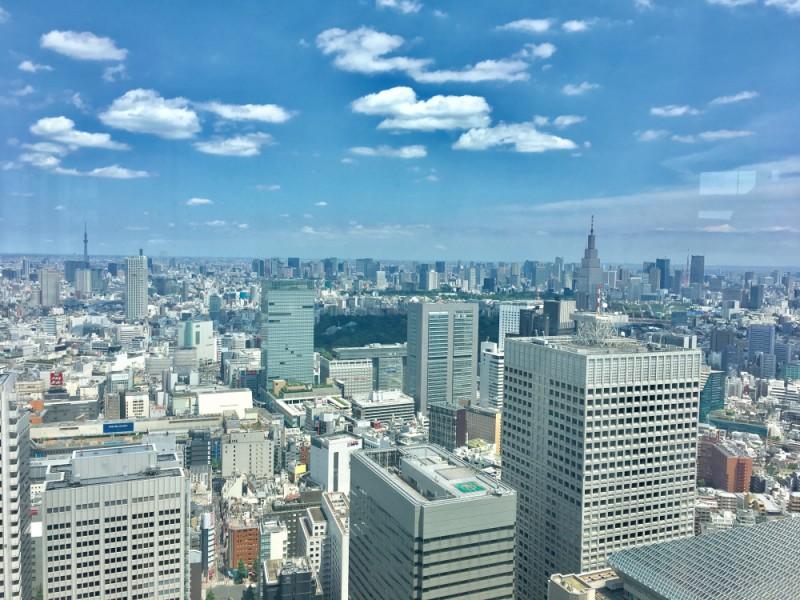 新宿の高層ビルで空中散歩!都庁とパワースポット「熊野神社」を巡るおすすめ観光コース