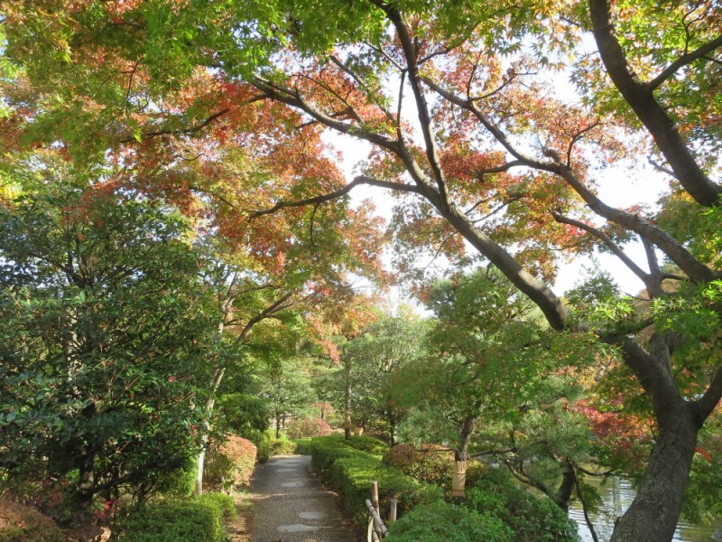 「都立府中の森公園」で紅葉狩り!周辺のおしゃれなグルメスポットも楽しむお散歩コース