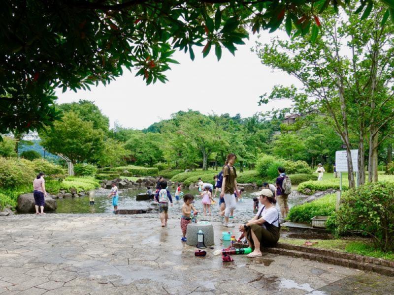 都立「陵南公園」のじゃぶじゃぶ池で大はしゃぎ!パンもピクニックも楽しむ夏の親子おでかけコース