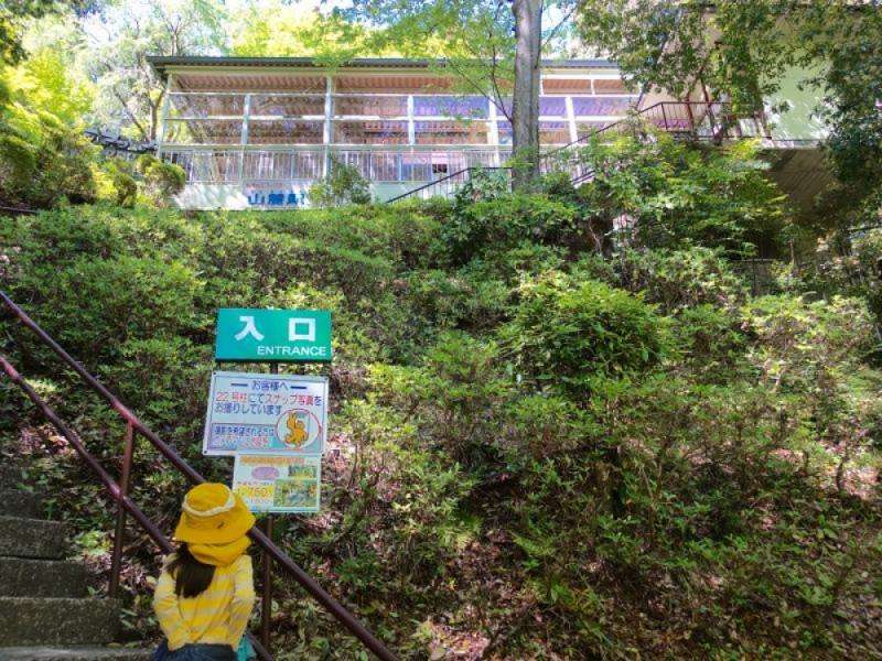 【9:30】「清滝駅」駅前で「若葉まつり」を見学