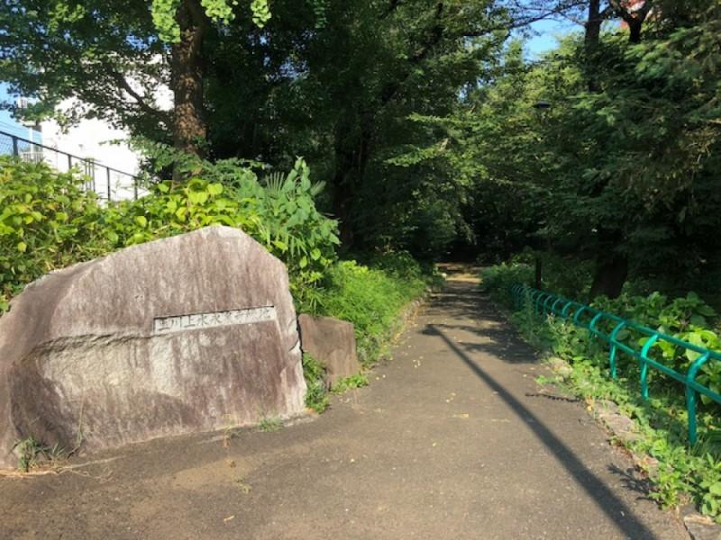 【13:00】「玉川上水永泉寺緑地」を散策