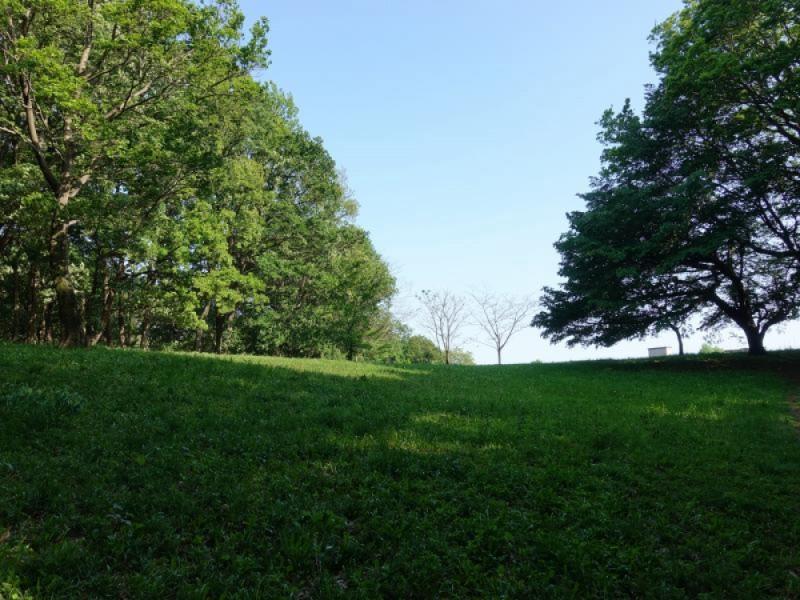 爽やかな季節に行っておきたい!天然酵母パンを買って片倉城跡公園で1日のんびりピクニックするおでかけコース