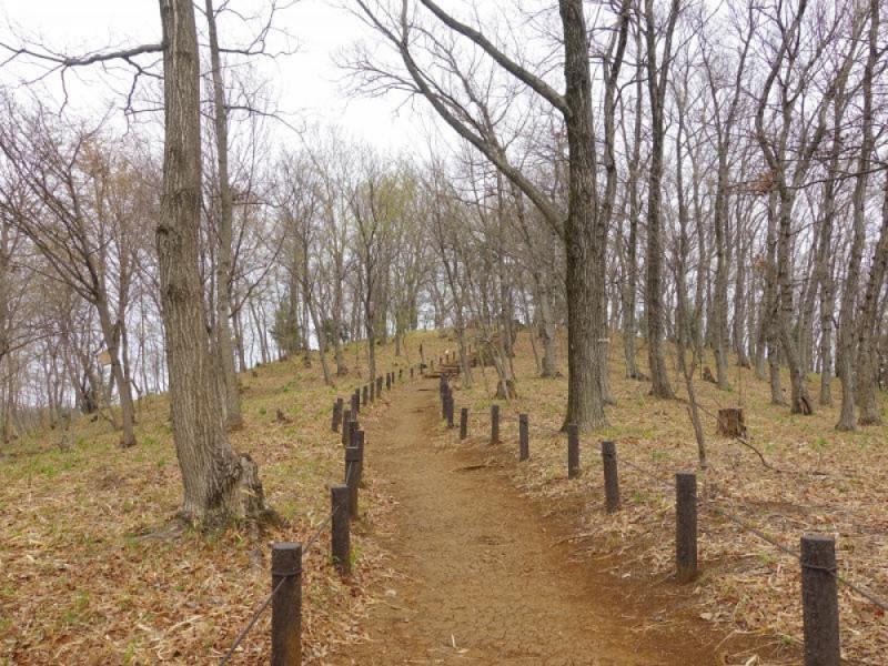 【10:30】東京都立「浅間山公園(せんげんやまこうえん)」を散策
