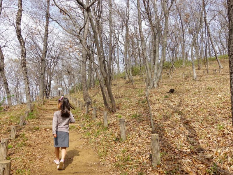 パンを買って「浅間山公園」で春ピクニック!東府中で人気のカフェスイーツも楽しむ親子おでかけコース