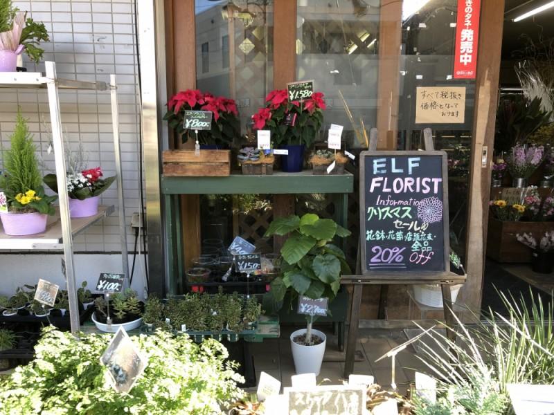 【14:00】「ELF FLORIST(エルフフローリスト)」で季節の花をお土産に