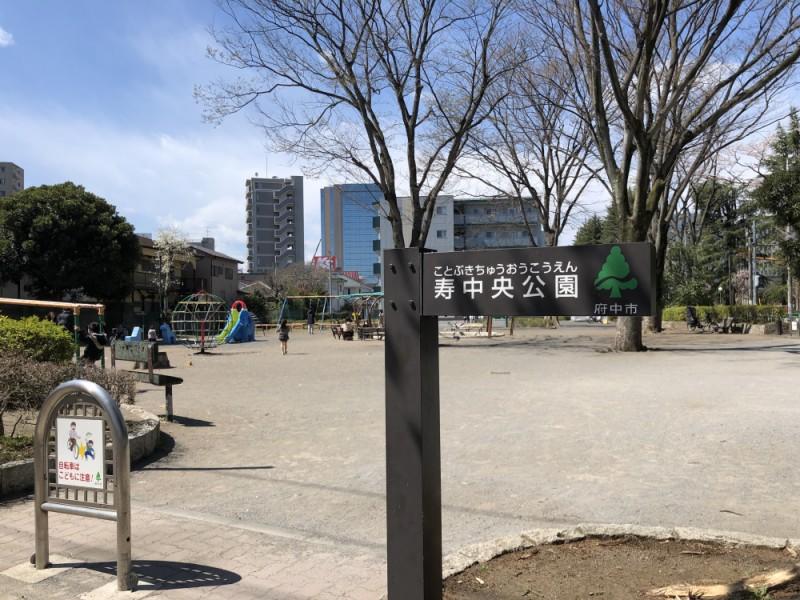【10:40】「寿中央公園」でお花見