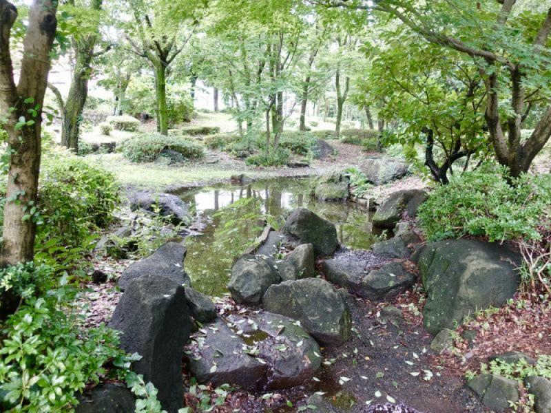 【11:20】「瓜生緑地」でひんやり、せせらぎを見ながら散策