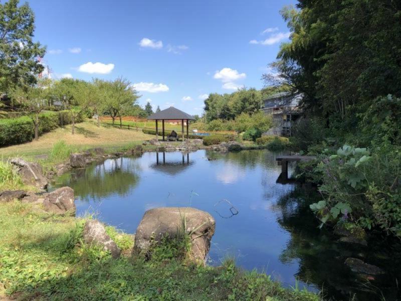 若葉台駅周辺の上谷戸川のせせらぎと里山の風景、古民家カフェを楽しむおでかけコース