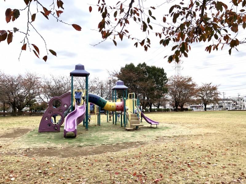 電車好き親子にぴったり!芝生たっぷりの「小山公園」で遊んで電車スポットを楽しむ橋本駅周辺親子おでかけコース