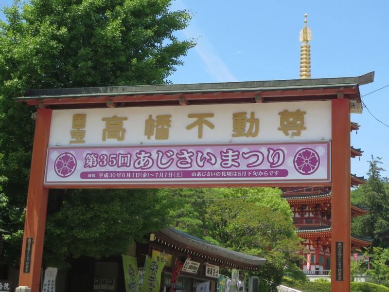【12:30】「高幡不動尊金剛寺」で見ごろの「あじさいまつり」へ!