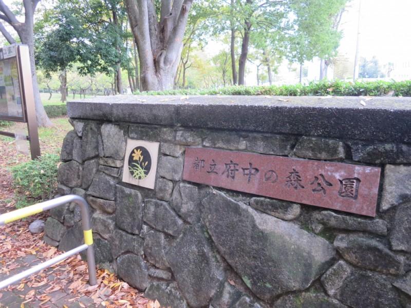 【10:40】「都立府中の森公園」で紅葉狩り