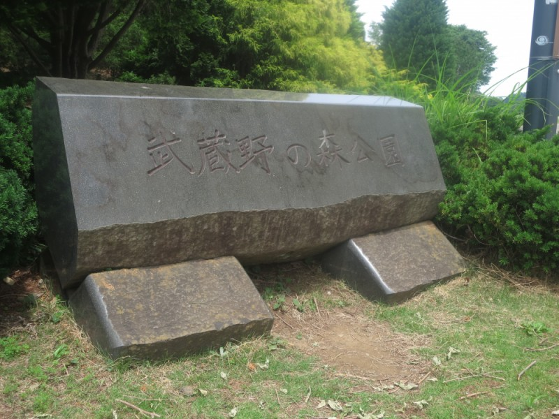 【10:40】「武蔵野の森公園」でめいっぱい遊ぶ