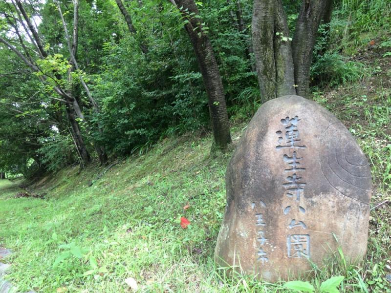 【13:50】自然豊かな「蓮生寺公園」を散策