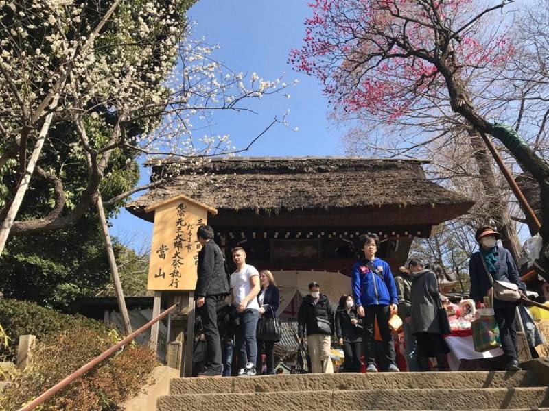 【14:00】梅の花が咲きほころぶ「深大寺」を参拝