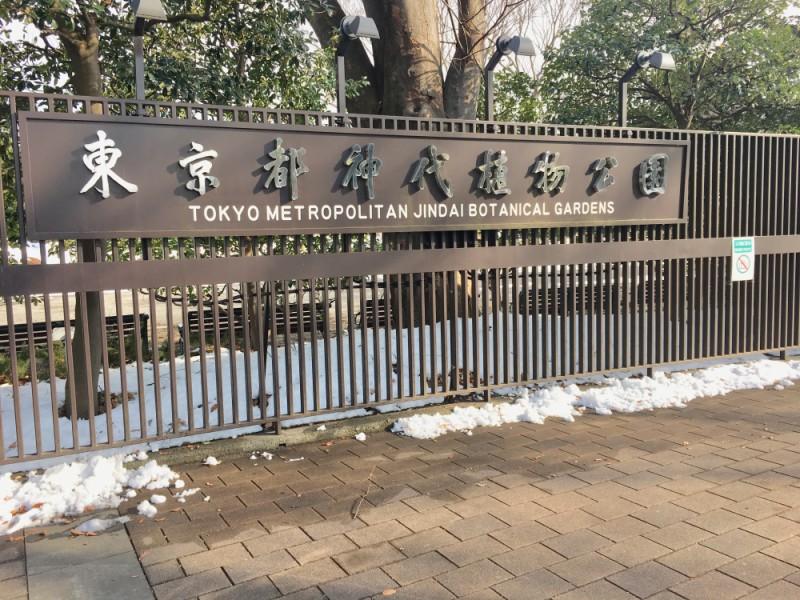 【13:00】「東京都立神代植物公園」でうめ園や大温室を散策