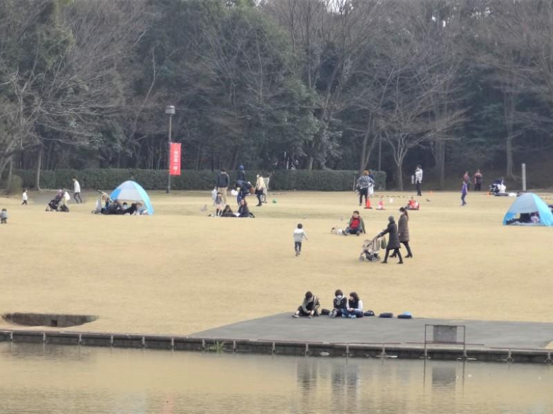 子連れにおすすめ薪窯ピザランチ。おやつをテイクアウトして「多摩中央公園」で春を感じる親子おでかけコース