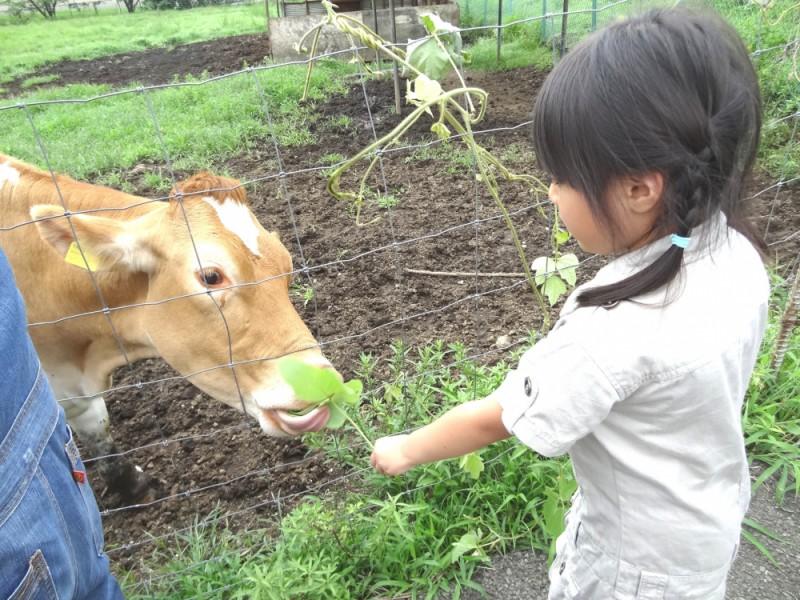 親子で牧場体験!「磯沼ミルクファーム」でちち搾りやバター作りを楽しむおでかけコース
