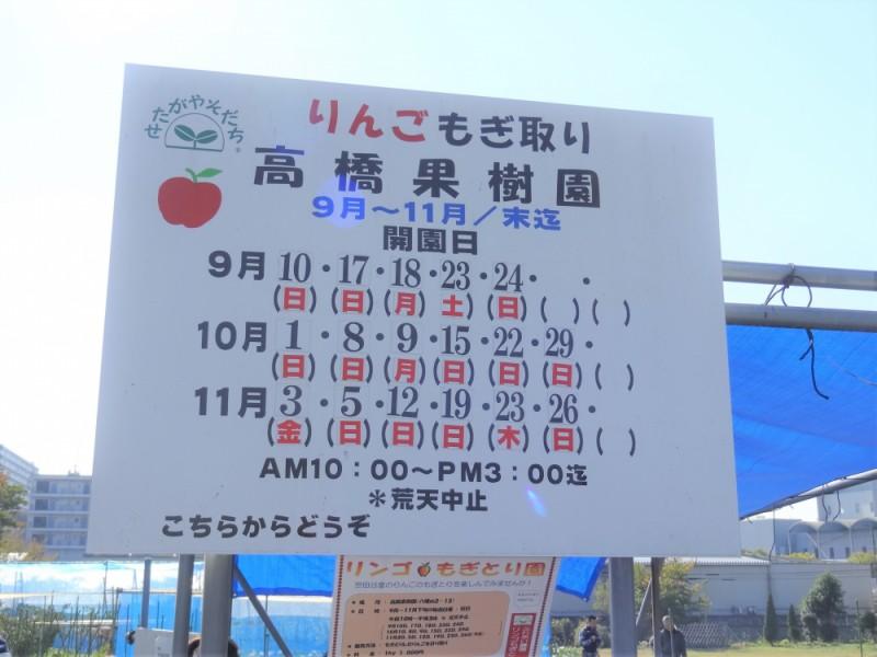 【10:30】「高橋果樹園」でりんご狩り
