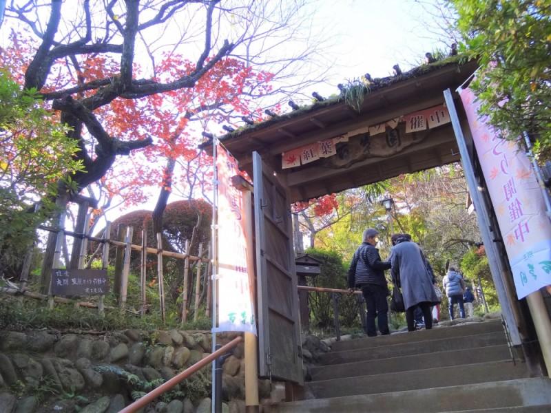 【13:20】「京王百草園」で秋を感じるお散歩を楽しむ