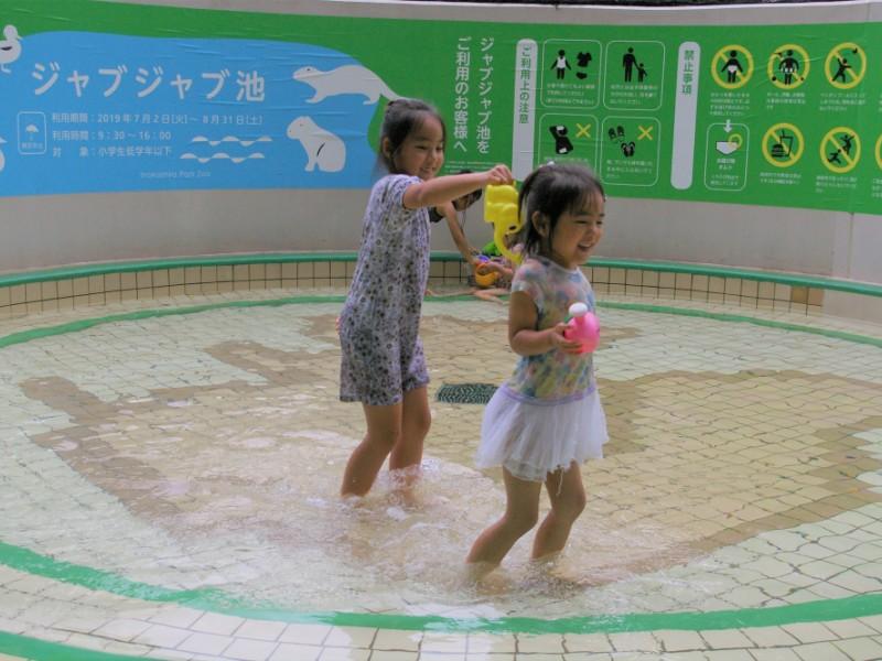 井の頭自然文化園の「水生物園」や夏期限定の「ジャブジャブ池」でお得に涼しく遊ぶ親子コース