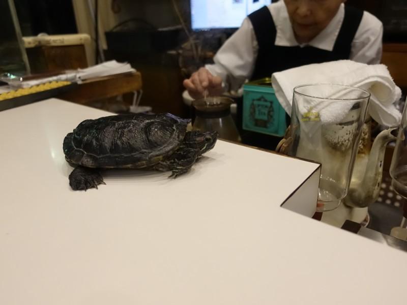 【17:10】「珈琲専門店 みみ」でカフェタイム