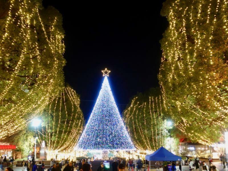 【17:00】「多摩センターイルミネーション2019」オープニングセレモニー・点灯式を楽しむ!