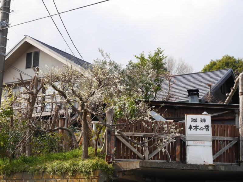【14:00】「木の香」でカフェタイム