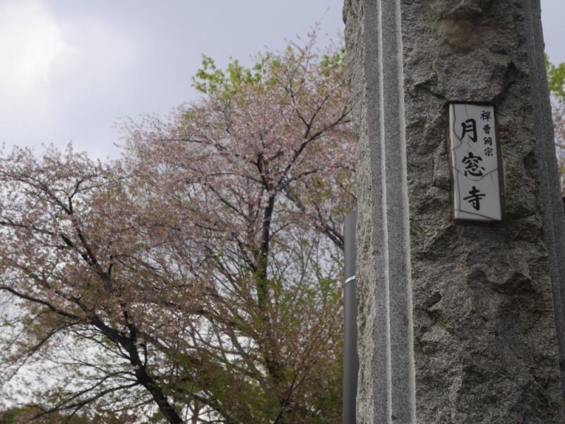 【15:15】吉祥寺四軒寺のひとつ「月窓寺」へ