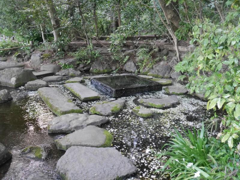 江戸時代から名水の沸く行楽地だった!「井の頭恩賜公園」の歴史と文化を辿る観光コース