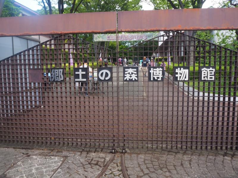 【13:00】「府中市郷土の森博物館」の園庭であじさいを鑑賞
