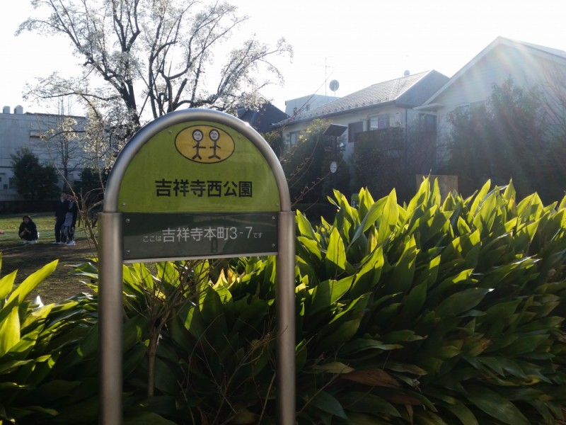 【14:45】緑あふれる穴場スポット「吉祥寺西公園」でカフェタイム