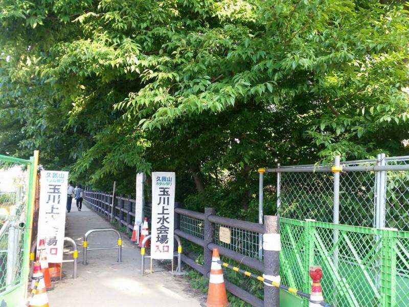 東京でホタルが鑑賞できる「久我山ホタル祭り」へ!地元グルメとイベントを楽しむおすすめコース