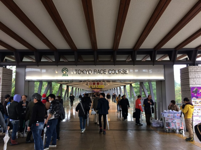 【11:20】「東京競馬場」入場口到着