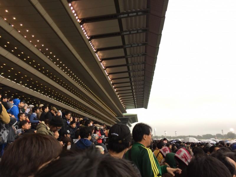 【15:20】メモリアルスタンド前で競馬観戦