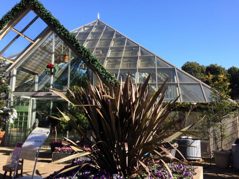 【13:30】「グリーンライブセンター」の温室で植物観賞