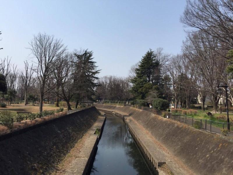 【12:15】「和田堀公園」に到着!ピクニックと公園あそびを楽しむぞ!