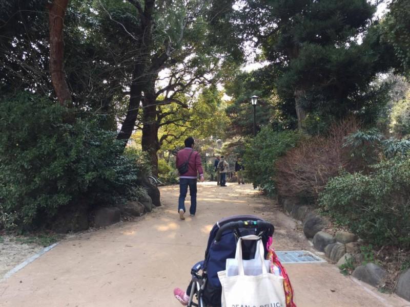 【14:45】「大宮の杜緑地」寄り道しながら井の頭線「西永福駅」に向かおう!