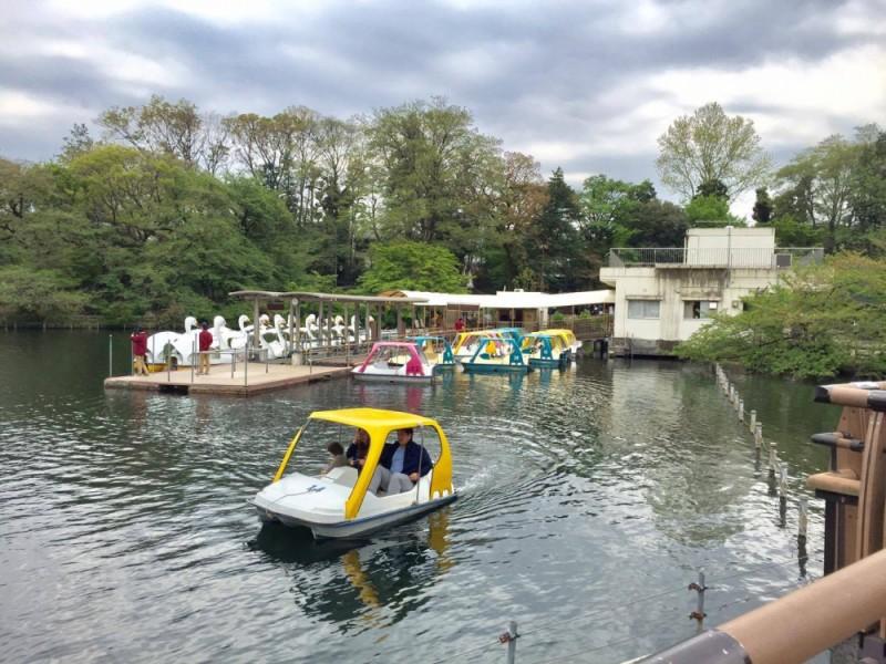 【11:30】2歳児生まれて初めてのボート体験「井の頭公園ボート場」