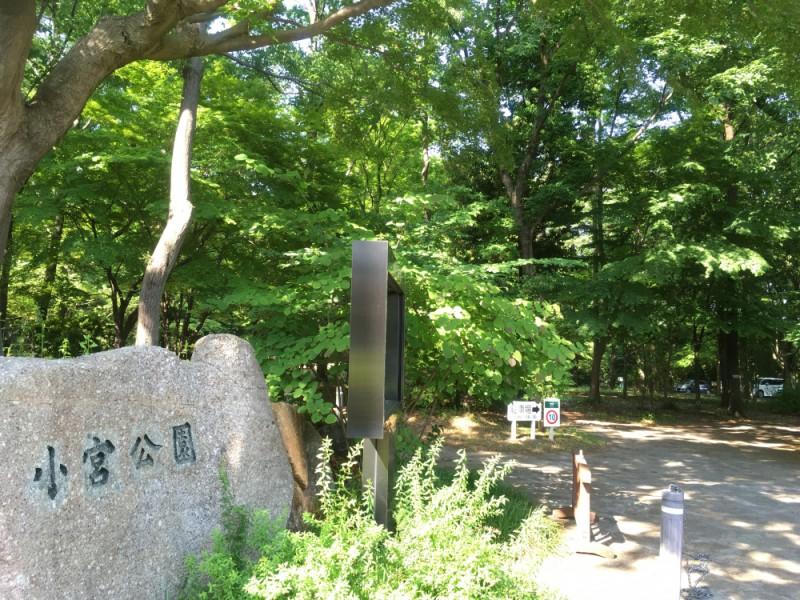 【13:30】自然たっぷりの「小宮公園」で森林浴散歩を楽しむ