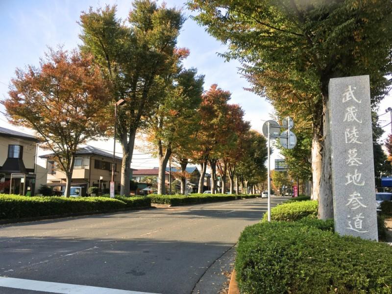 【14:00】「陵南公園」周辺を散策